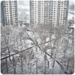 Мертвая тишина сквозь городской шум...