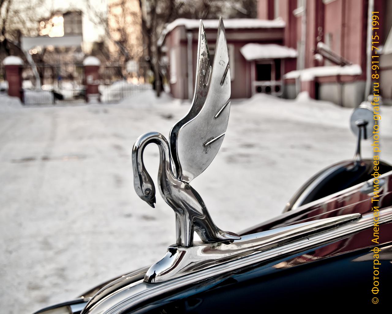 Из Архивов фотографа: Packard Super Eight 180 1941 (Паккард Супер 8 180 1941)